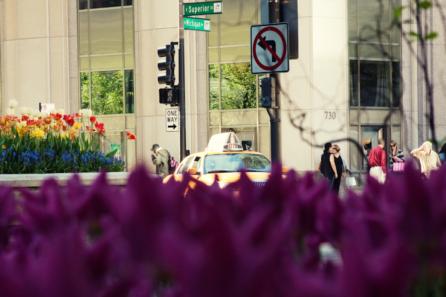 I made this photo last week when I was in the city with a few friends. I noticed these beautiful flower beds and all of the traffic near by and I thought the perspective of hiding from cabs or